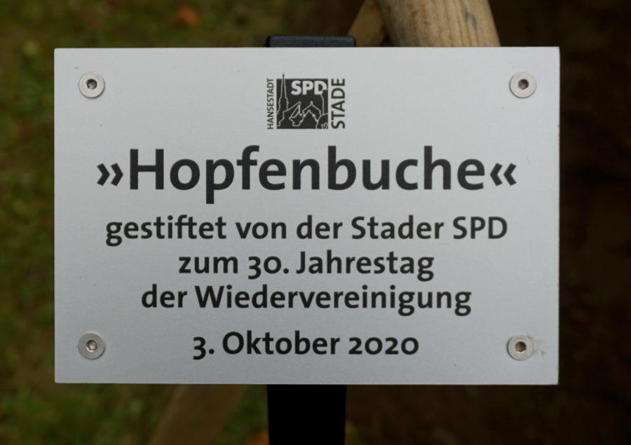 Tafel Demokratiebaum zum 30. Jahrestag der Wiedervereinigung
