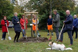 SPD Stade pflanzt einen Demokratiebaum