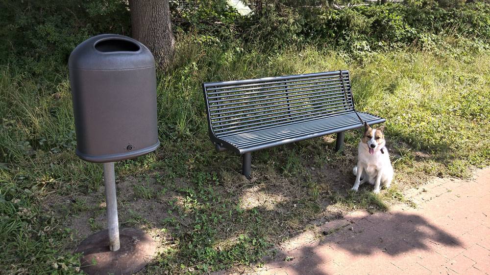 SPD Antrag umgesetzt: Parkbänke in Stade Riensförde, Parkbank mit Müllbehälter und wartendem Hunde