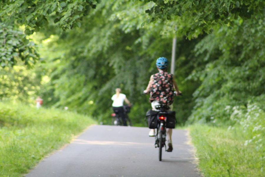 Radfahrerin auf dem Radweg Schwingewiesen in Stade