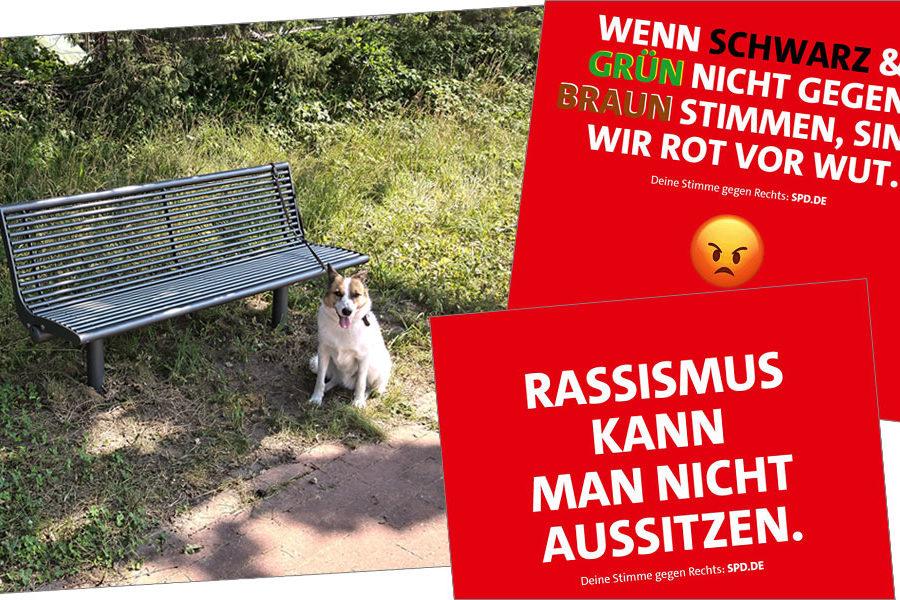 """Sozen-Sonntag Nummer 3: Parkbänke für Riensförde, Sharepics: """"Rassismus kann man nicht aussitzen"""" sowie """"Wenn schwarz und grün nicht gegen braun stimmen, sind wir rot vor Wut."""""""